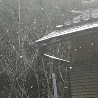 小野なな nanaono  雪三昧 何時止むのでしょうか