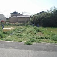蓮池の草刈り