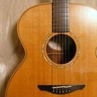 AVALON 『アヴァロン』ギター 撮影会♪