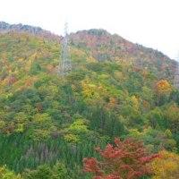 Gifu/ Mt.Norikura ( 1 )