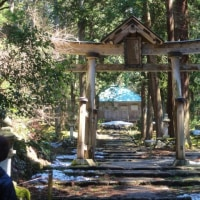 京都 & 福井の旅 6 平泉寺白山神社