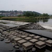 アユ釣り情報:水が流れていなくちゃ川じゃない・・・