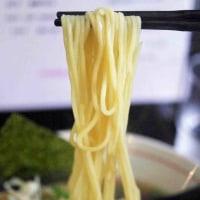 麺 雲雀(ひばり)@ふじみ野市 毎回食してもほんわか優しい煮干しらーめん680円、CPも言う事無