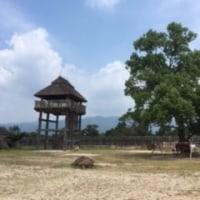 吉野ヶ里を訪ねる。