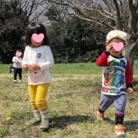 2017年3月30日(木)の【写真館】