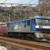 2017年3月25日 東海道貨物線 東戸塚 EF210-146 代走 5095レ