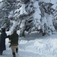 雪上車で行く蔵王樹氷めぐり