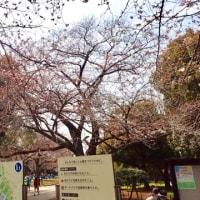 【駒沢公園・午後】3/25 練習
