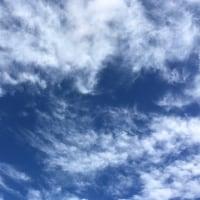 4/22 アースデイ(光が丘公園でまってます!!)