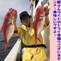 5/29の釣果・・・