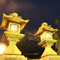 東大寺お水取り(お松明)