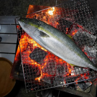 キャンプの話 ~志摩オートキャンプ場