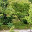 勧修寺(かじゅうじ)の蓮