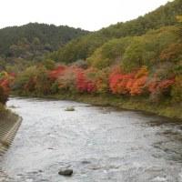 福島県南部に行っての紅葉は?