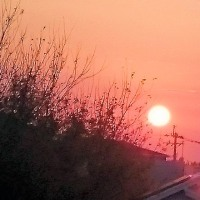 恋人と夕陽を見ながら、ふたりの未来を語ったなどという思い出は、僕にはないです