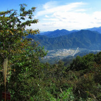 高川山とアサギマダラ-2