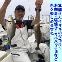 6/22の釣果