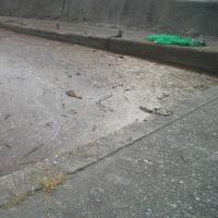 大雨被害その後
