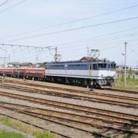 Electric Locomotive#204