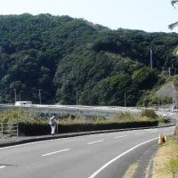 休日散歩~R321経由「ふれぱ」まで