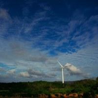 昼から晴れ間、強風。