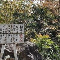 身延山(西ルート)登山③(回想)