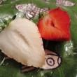 白苺との初めての出会い