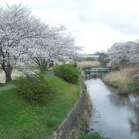 4月3日(日)総合運動公園 〈No.01〉