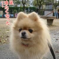 ソ~~ックス!(今日は写真です)