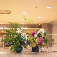 ・町田市民ホール・ロビー展示(紫陽花2)