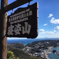 【FP益山真一の体・心・時間・仕事・おかねのバランス生活】河津桜と富士山、輝く海に癒されました!