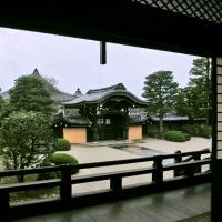 2016年秋 京都紅葉巡り-04金戒光明寺