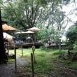 森のなかのカフェは
