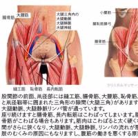 胃の不調②‥‥胃が圧迫されている場合