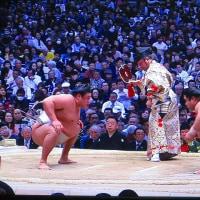 日記(3.22)相撲
