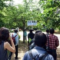 2017 ヨドバシカメラ撮影会(大阪・長居公園)