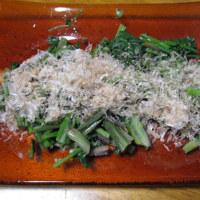 庭の山菜。