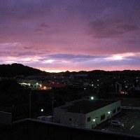 薩摩川内市 可愛(えの)山陵 左がカメの頭と見えませんか?  新田神社