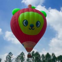 熱気球@あずみの公園