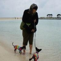 エメラルドなビーチともんちの大好物@沖縄旅行2017