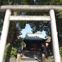 墨田区小村井~香取神社の梅がきれいです