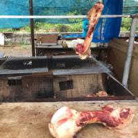 黒島牛まつりの後半。