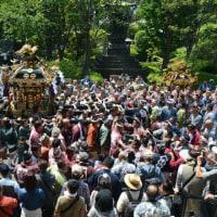 浅草三社祭・・2