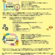 Daisy〜2017夏のLIVE & W.S.予定...☆その1