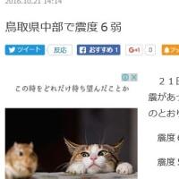 鳥取の地震で揺れたが…