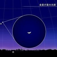 金星が最大光度(2・17)