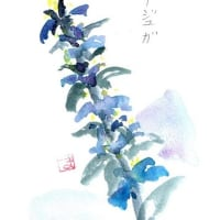 Masakoさんからの絵手紙