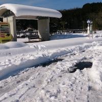 大雪から三日目の様子、、、