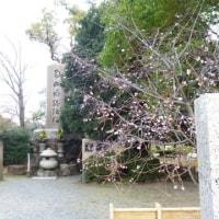 これは石山本願寺の碑