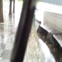 どえらい雨